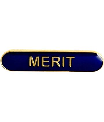 Merit Lapel Bar Badge Blue 40mm x 8mm
