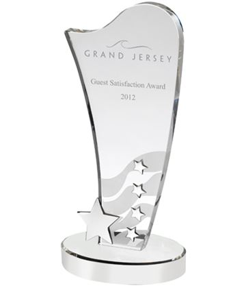 "Curved Optical Crystal Award with Silver Metal Star 25.5cm (10"")"