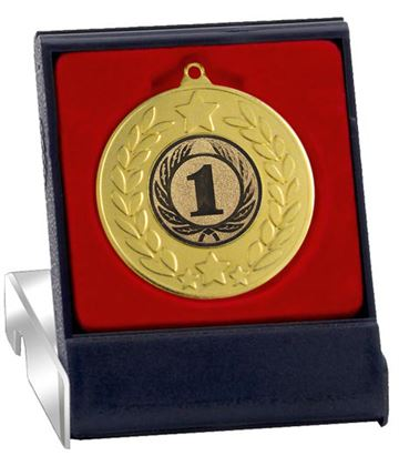 "Gold Stars & Laurel Wreath Medal in Presentation Box 50mm (2"")"