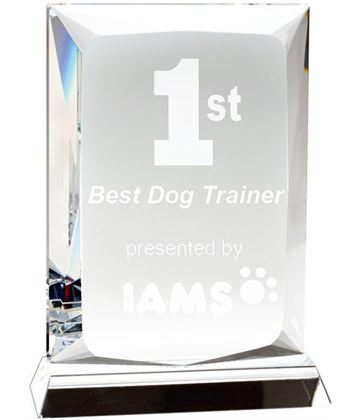 "Heavyweight Ambition Optical Crystal Plaque Award 16cm (6.25"")"