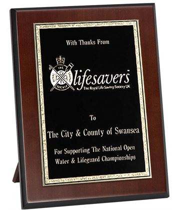 """Wooden Plaque with Brass Plate Award 25.5cm (10"""")"""