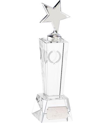 "Unite Silver Star Award 18cm (7"")"
