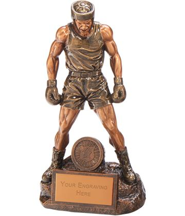 "Ultimate Boxing Award 20.5cm (8"")"