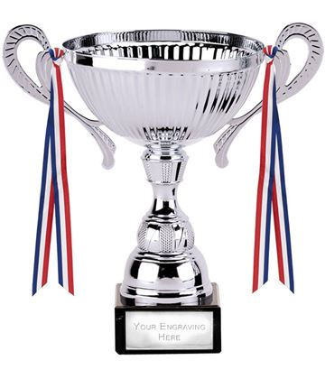 "Turin Silver Cup 21.5cm (8.5"")"