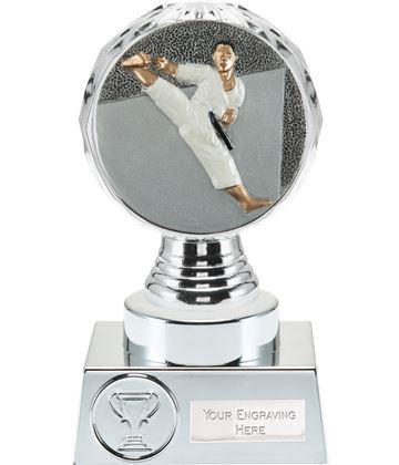 "Karate Trophy Silver Hemisphere  15cm (6"")"