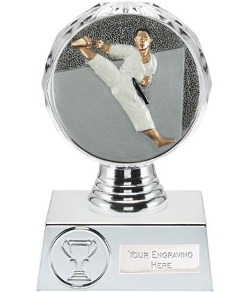 "Karate Trophy Silver Hemisphere 13.5cm (5.25"")"