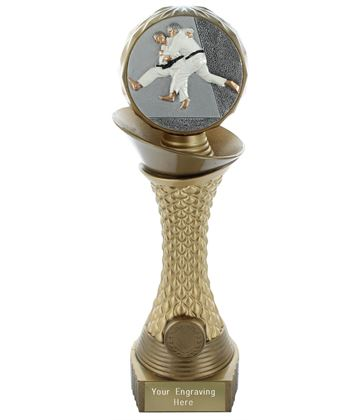 "Judo Trophy Heavyweight Hemisphere Tower Gold & Bronze 28cm (11"")"