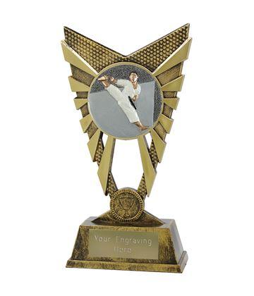 "Valiant Karate Trophy Gold 23cm (9"")"