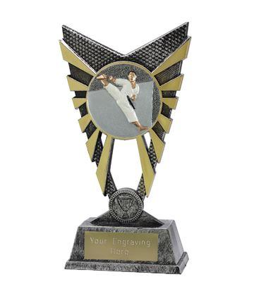 "Valiant Karate Trophy Silver 23cm (9"")"