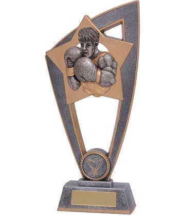 "Boxing Star Blast Trophy 18cm (7"")"