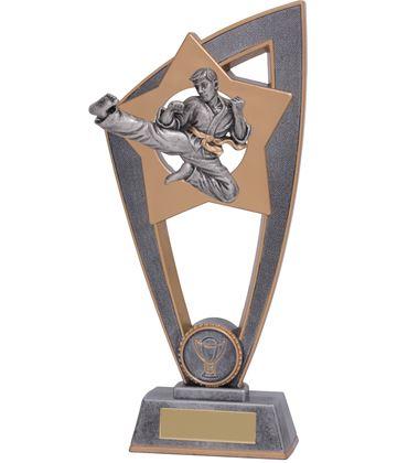 "Karate Star Blast Trophy 18cm (7"")"