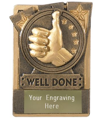 """Well Done Fridge Magnet Award 8cm (3.25"""")"""